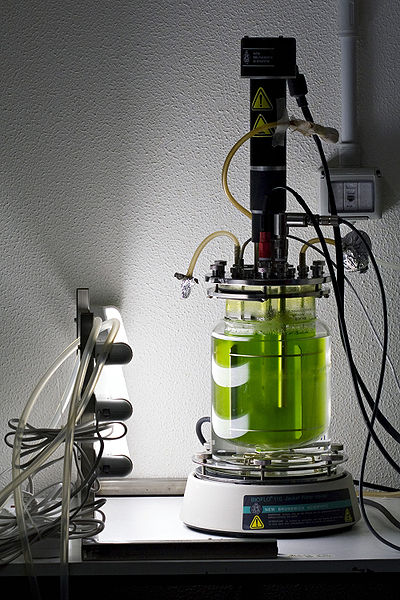 Bioreactor by kaibara87 / Licensed under a Creative Commons Attribution license